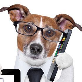 Marketing para veterinarios